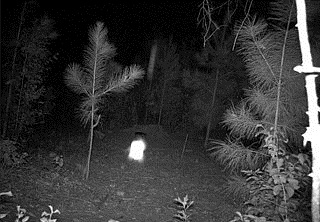 Fotokapan, hareket algıladığında resim çekme esasına göre çalışan kamera sistemleridir